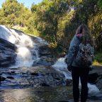 DÍA 6 EN TAILANDIA: El Parque Nacional Doi Inthanon
